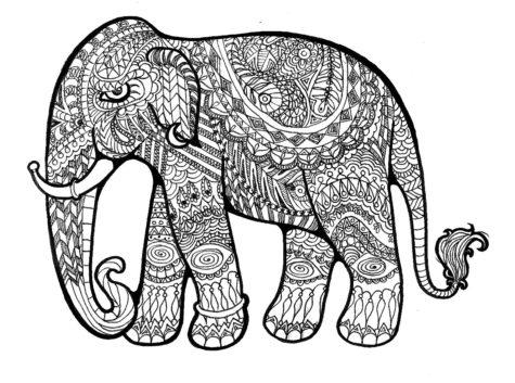 elephant-drawing-796998