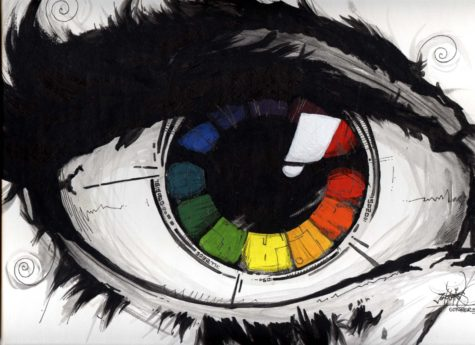 eye-color-wheel-10inook