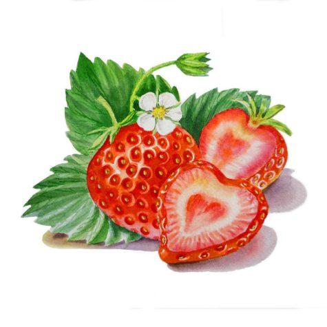 strawberry-heart-irina-sztukowski