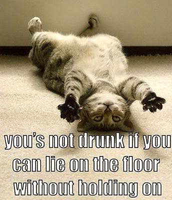 9_funny_drunk_cat