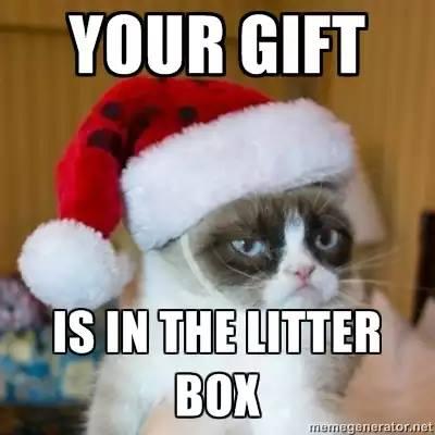 grumpy-cat-christmas-meme-004-in-the-litter-box