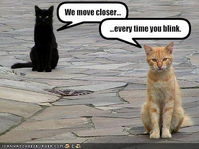 move-closer