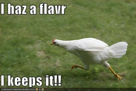 funny-pictures-flavor-running-chicken