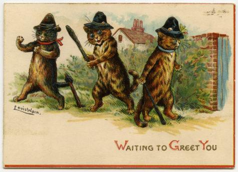wain-cats