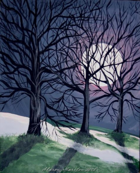 last-night-of-the-winter-moon-sharon-marston
