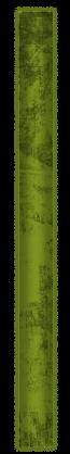 rcaagmlei-2
