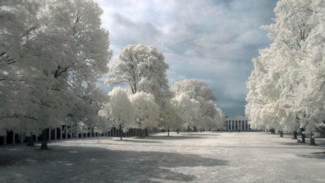 beauty-white-backrounds-desktop-293400
