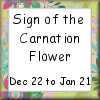 Sign of the Carnation