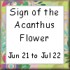 Sign of the Acanthus