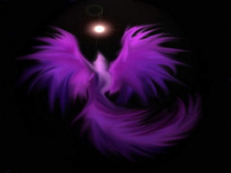 Purple_Phoenix_Wallpaper_1024x768_wallpaperhere