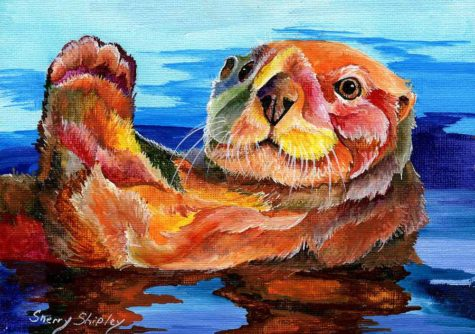sea-otter-sherry-shipley