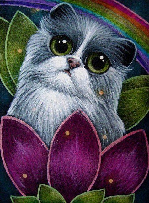 bicolor-fairy-cat-in-her-flower-rainbowjpg