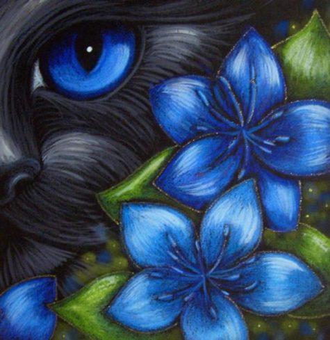 black-cat-fennel-flowers