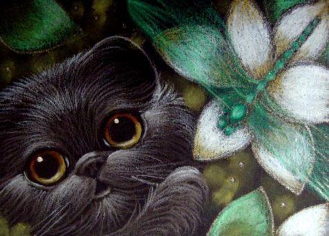 black-persian-kitten-cat-dragonfly