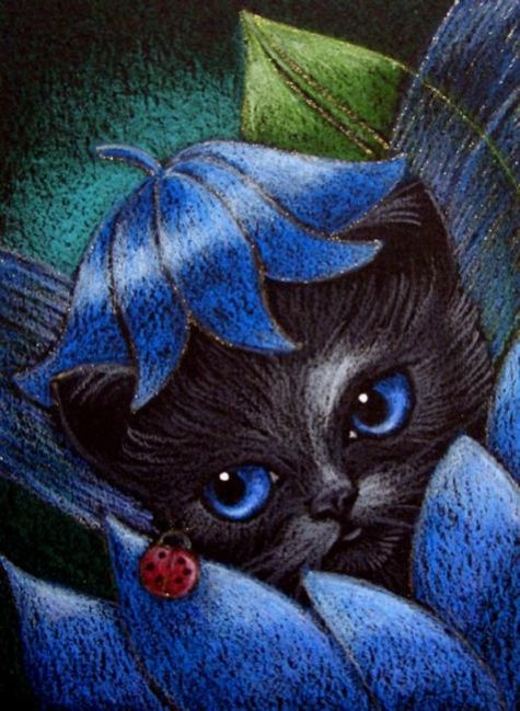 newborn-black-blue-fairy-kitten-cat