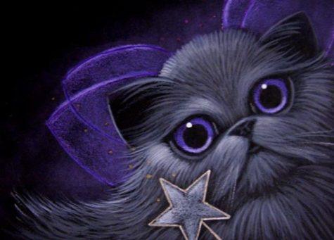 smokey-persian-fairy-cat
