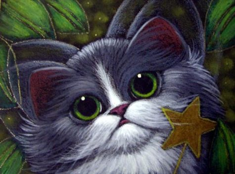 tuxedo-fairy-cat