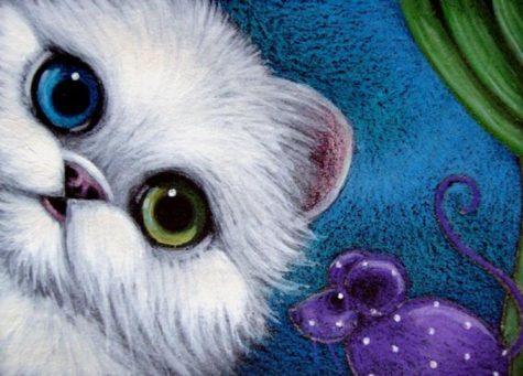 white-persian-cat-odd-eye-mouse-toy