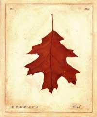 oak-leaf-print-fx