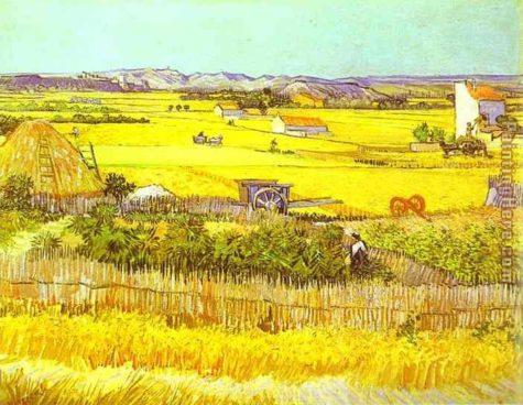 harvest-landscape