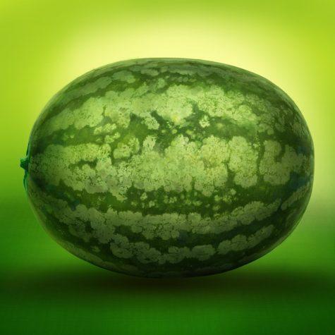 watermelon-630276_960_720