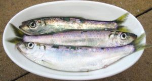 herring-in-bowl
