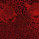 Animal Prints Galore