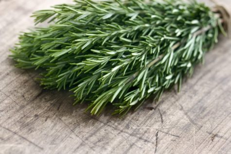 bigstock-Green-Fresh-Rosemary-Herbs-48887360-840x560