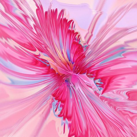 carnation-pink-anastasiya-malakhova