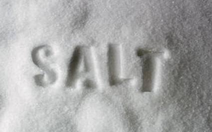 salt-e1355449110179