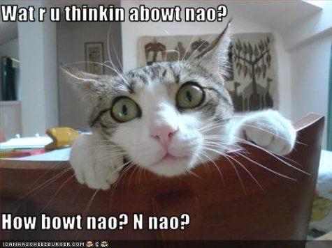 u-thinkin-abowt