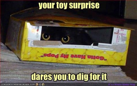 your-toy-surprise