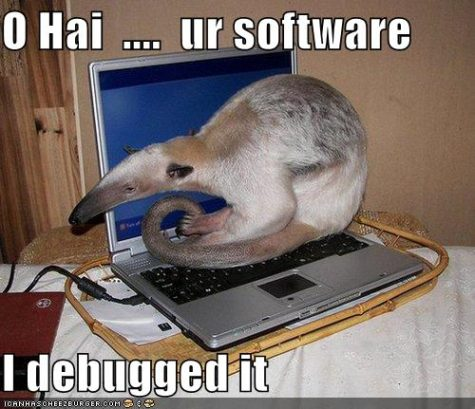 funny-pictures-anteater-debugged-laptop