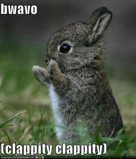 funny-pictures-bravo-bunny