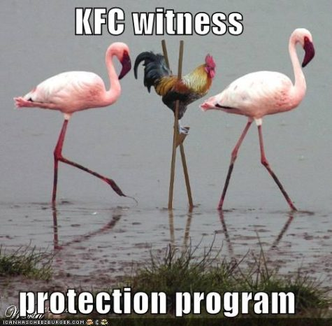 funny-pictures-kfc-chicken-stilts-flamingos