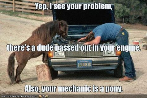 funny-pictures-pony-mechanic
