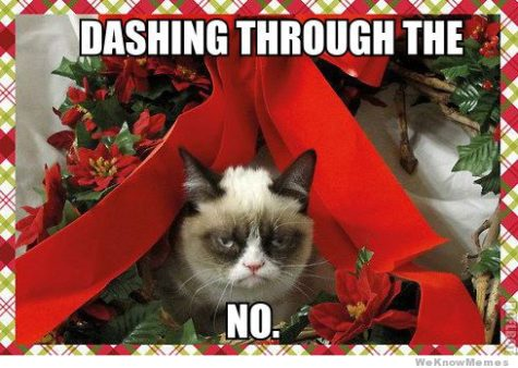 dashing-through-the-no-grumpy-cat-meme1