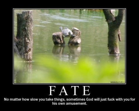 fate_-_no_matter_how_slow_you_take_things_sometimes_god_will_just_fuck_with_you_for_his_own_amusement