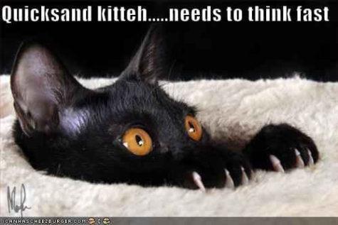 quicksand-kitteh