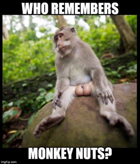 Monkey Meme City