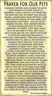 Blessing of the Animals   Pagan Calendar