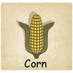 corn-145-labeled
