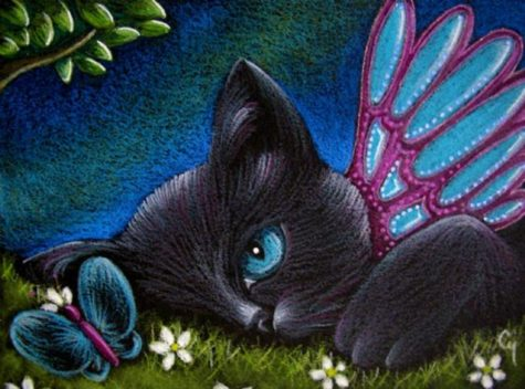 black-cat-fairy-catterfly-butterfly