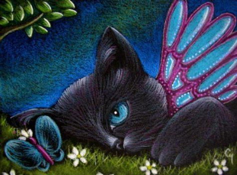 black-cat-fairy-catterfly-butterfly