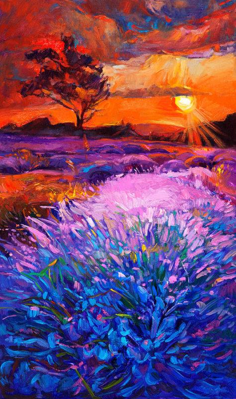 10-lavender-fields-boyan-dimitrov