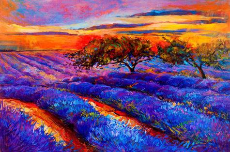 4-lavender-fields-boyan-dimitrov