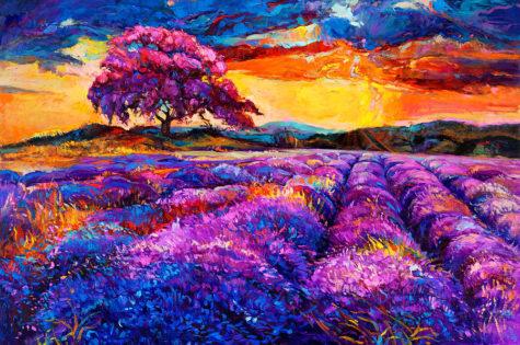 6-lavender-fields-boyan-dimitrov