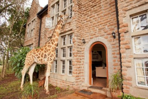 giraffe-manor-exterior2