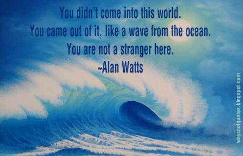 not-a-stranger
